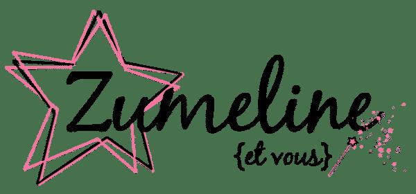 logo zumeline et vous
